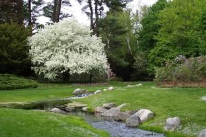 Dow_Gardens_0451