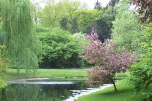 Dow_Gardens_0461
