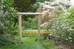 Dow_Gardens_0468