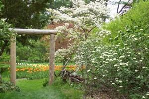 Dow_Gardens_0469